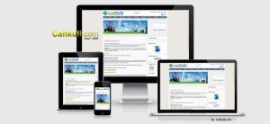 Jasa pembuatan website Website MLM