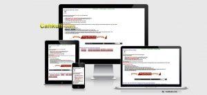 jasa website pay per click